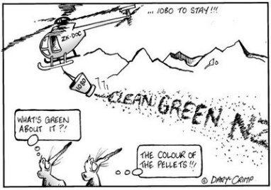 cleangreennz