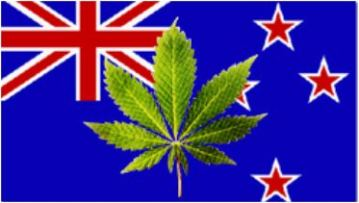 cannabis nz