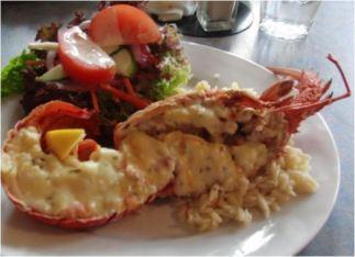 Kaikoura Crayfish