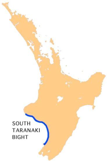 Gangs blight townships in the South Taranaki Bight