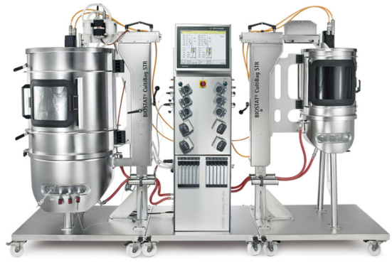 bioreactor NZ universities Ponzi scheme