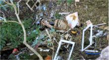 kaikoura dump