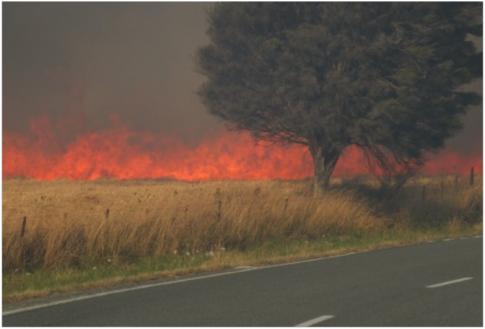 Onamalutu Forest fire