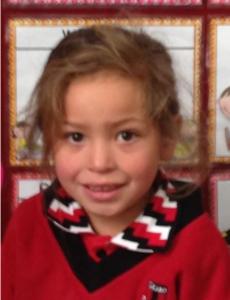 child abduction palmerston north - Copy