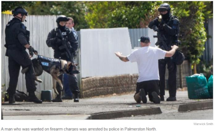 palmerston-north-arrest