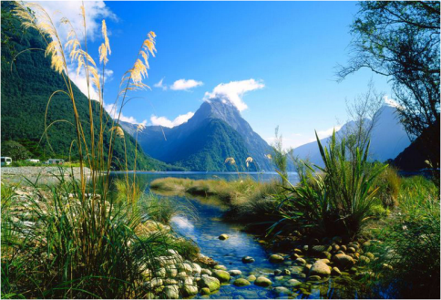 new-zealand-nice-scenery-shame-about-the-rest